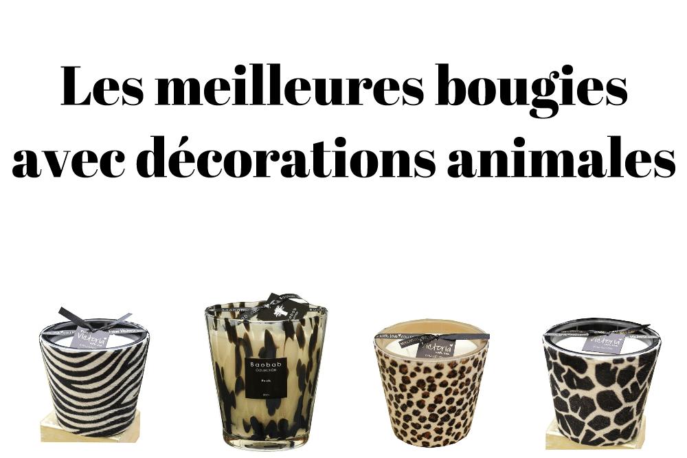 Les meilleures bougies avec décorations animales